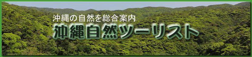 自然のことなら沖縄自然ツーリスト