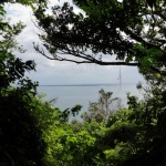 チョウノハナから見る久高島