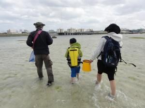 那覇近くでできる海の生き物観察ツアー