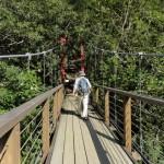 比地吊り橋