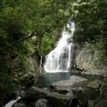 """休止中:やんばるの""""自然を身近に感じる""""比地大滝ツアー"""