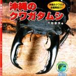 沖縄のクワガタムシ