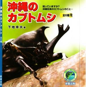 沖縄のカブトムシ
